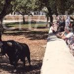 Actividad-Ganadera-Almuerzo-Campero (44)