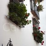Casa-Palacio-Málaga-23 (14)