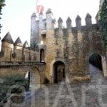 Castillo de Cordoba (11)