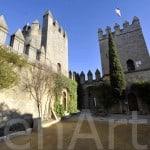 Castillo de Cordoba (9)