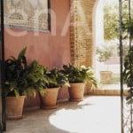 Hacienda-7-Actividades-Sevilla (18)