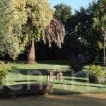 Hacienda-Sevilla-Actividades-20 (8)