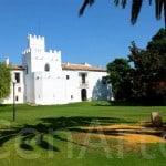 Hacienda-Sevilla_TEambuilding-13 (10)