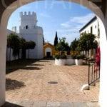 Hacienda-Sevilla_TEambuilding-13 (11)