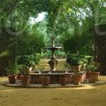 Hacienda-Sevilla_TEambuilding-13 (7)