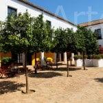 Hacienda-Sevilla_TEambuilding-13 (8)