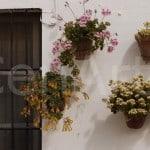 Hacienda-en-Sevilla-6 (71)