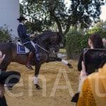 Hacienda-en-sevilla-eventos-16 (44)